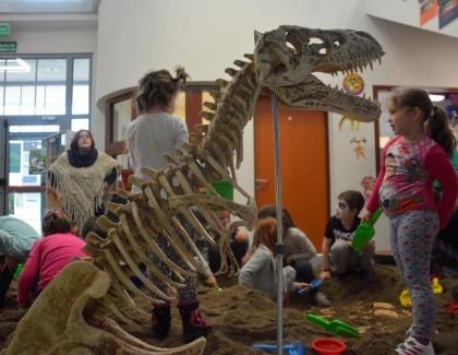 Kamieniołomy- nasi kochani paleontolodzy :)