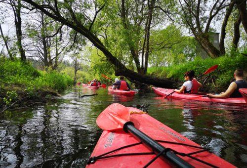 Spływ kajakowy – sprzątanie rzek.